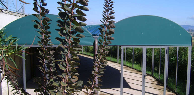 Struttura a veranda in ferro